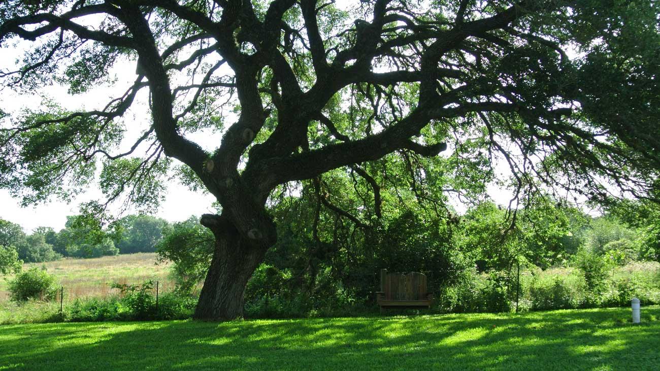 Whispering Oaks RV Park